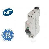 Disjoncteur modulaire phase neutre 3kA General Electric