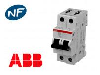 Disjoncteur bipolaire modulaire 6kA courbe C ABB