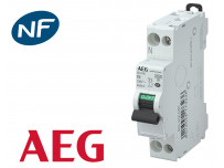 Disjoncteur modulaire phase neutre 4.5kA à vis AEG