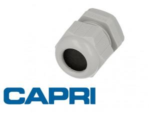 Presse étoupe ISO25 PA GR - boite de 10