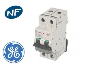 Disjoncteur Modulaire GE 10A 2P