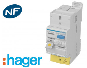 Interrupteur différentiel 2P automatique Hager