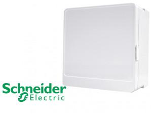 Porte opaque pour coffret 1 rangée Schneider Resi9