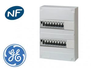 Tableau électrique précâblé pour GTL, 9 disj + 2 ID à borne auto