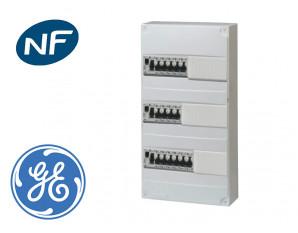 Tableau électrique précâblé pour GTL, 15 disj + 3 ID à borne auto