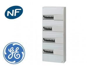 Tableau électrique précâblé pour GTL, 20 disj + 4 ID à borne auto