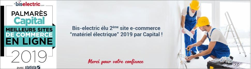 Bis-electric élu 2ème site E-commerce